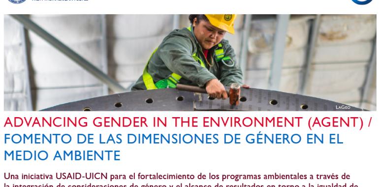 Mujeres y cadenas de valor de cocinas eficientes: experiencias de la región latinoamericana